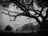 10 things to do for free in Kolkata